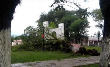 Una fuerte tormenta generó muchos daños materiales en Alvear