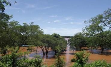 En la costa del Uruguay están atentos a la crecida y ya hay evacuados en Santo Tomé