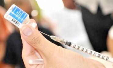 Fiebre amarilla: aconsejan a los viajeros vacunarse