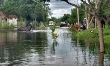 Volvió el agobio a San Luis: más de 50 familias afectadas por las inundaciones