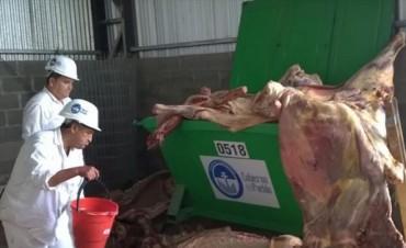 Decomisaron dos toneladas de carne vacuna en mal estado