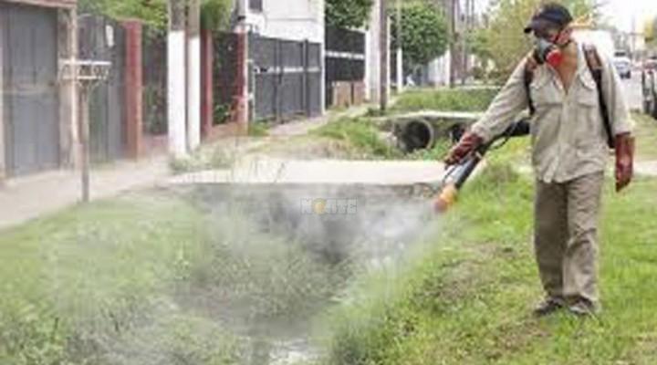 Extreman las medidas de prevención por caso de dengue autóctono