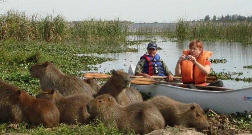 Frenan tratamiento del proyecto que crea el Parque Nacional Iberá
