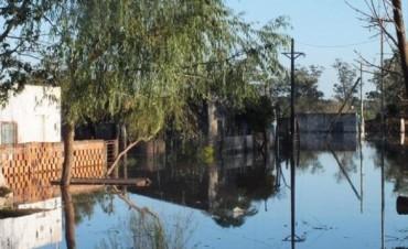 A 20 días del inicio de la creciente, aún hay muchos afectados en la costa del Uruguay