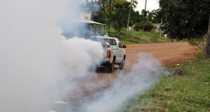 Hay 137 casos de Dengue