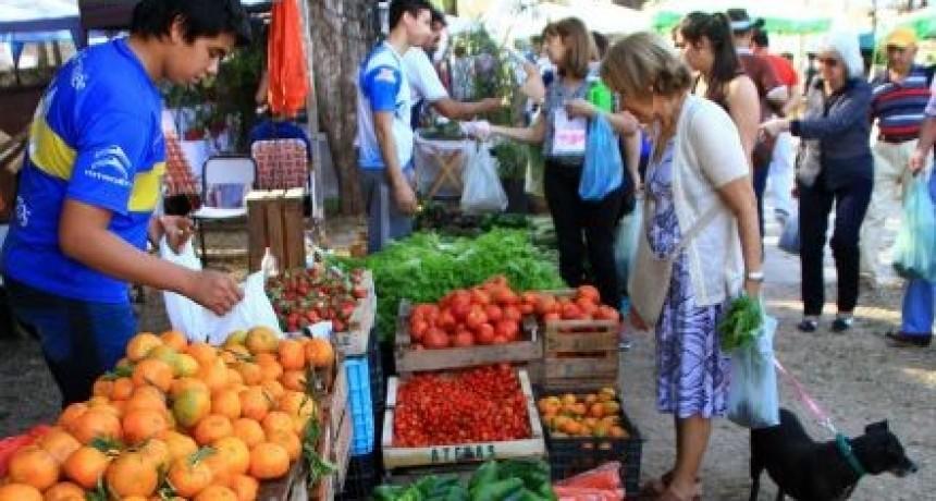 Unos 3.000 productores correntinos quedaron fuera del Monotributo Social