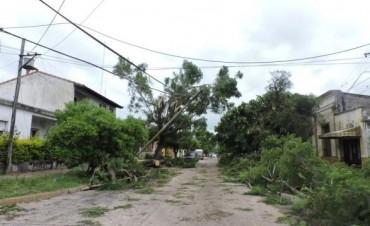 Todavía hay 12 localidades del interior sin energía tras el intenso temporal