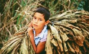 Trabajadores rurales: la producción en negro es el enemigo fundamental
