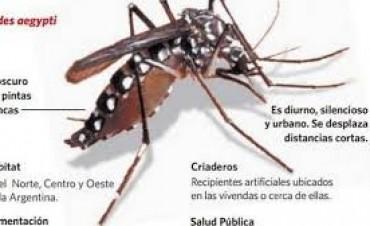 Alerta en Mercedes por un caso sospechoso de dengue