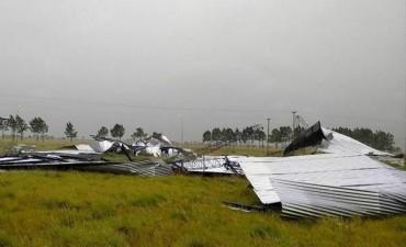 En diversas poblaciones el temporal afectó casas, el suministro de luz e invernaderos