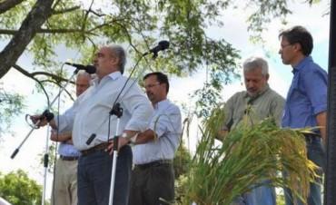Colombi destacó el aporte arrocero en la Provincia