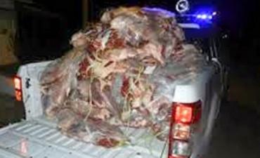 Golpe al contrabando: incautan 250 kilos de carne