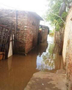 Creciente: no hay stock de carpas para los inundados