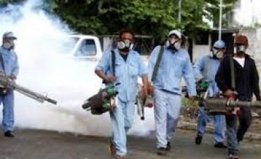 Santo Tomé: más casos de dengue