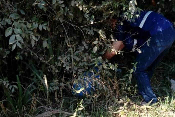 Correntinos descuartizados en Brasil: buscan restos de los niños