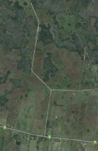 Veinte vacas fueron robadas de una estancia rural.