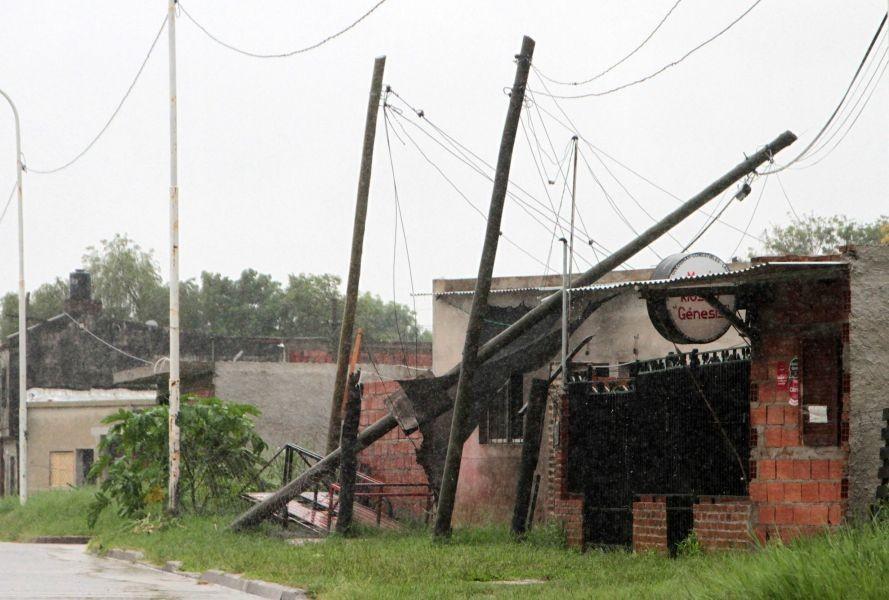 Más de 20 árboles y 30 postes caídos en la ciudad por el temporal