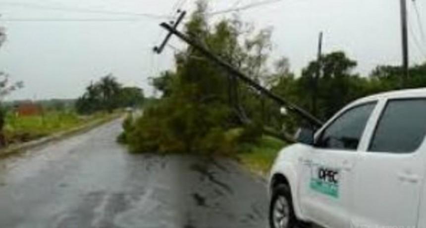 Por caída de postes, hay localidades del interior sin energía eléctrica