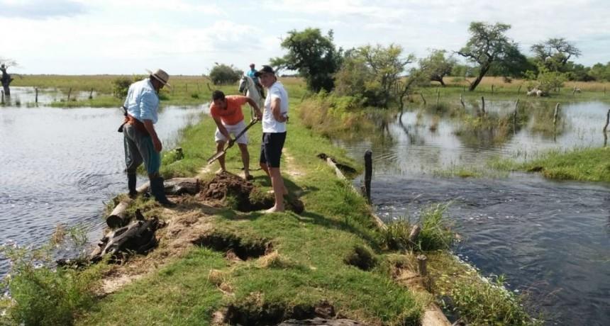 Corrientes busca parches para el campo y un auxilio a tabacaleros