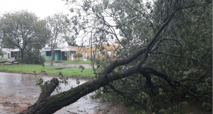 Tras el temporal en Paso de los Libres hay barrios sin energía y evacuados