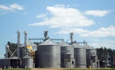 Productores agrícolas venden cereales ilegalmente y evaden impuestos