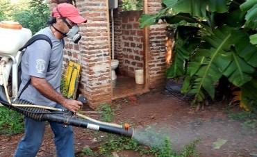 Intensifican control de mosquitos en Santo Tomé por brote en Paraguay