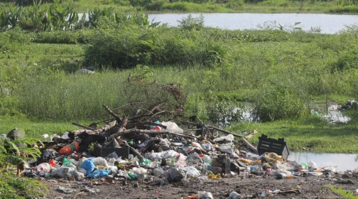 Por un caso sospechoso de leishmaniasis cutánea controlarán el barrio Río Paraná