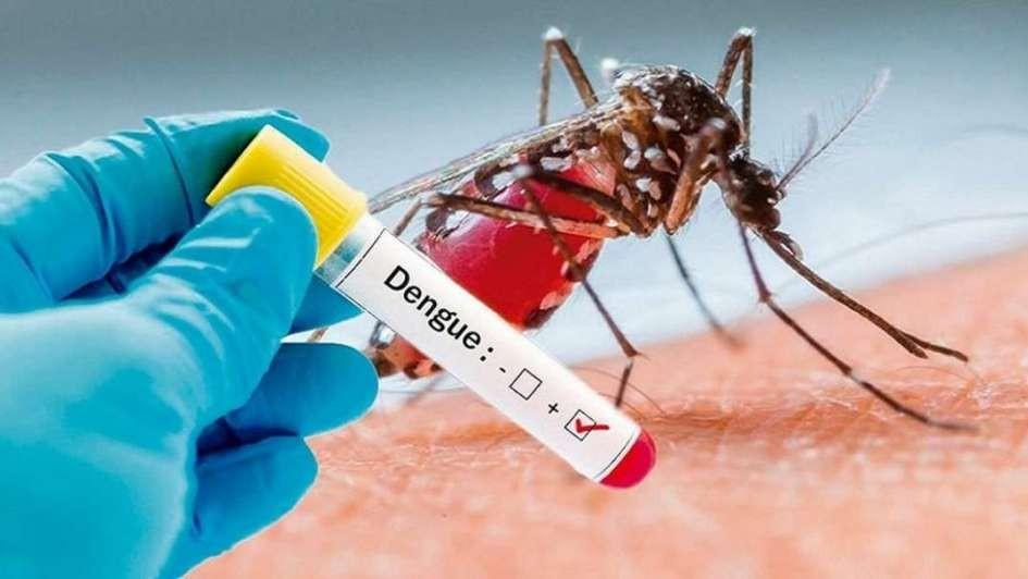 Último momento: primer caso de dengue autóctono en Santo Tomé.