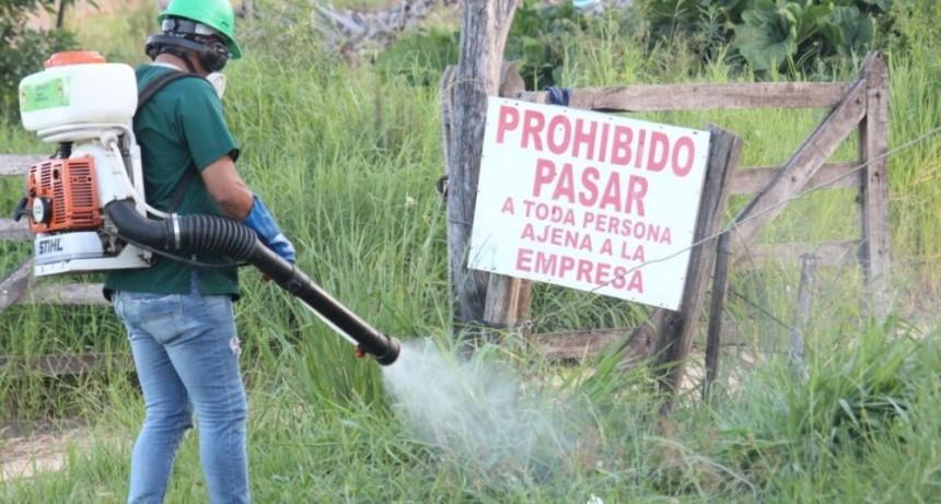 Dengue: ya hay 35 casos, 22 de ellos fueron detectados en febrero