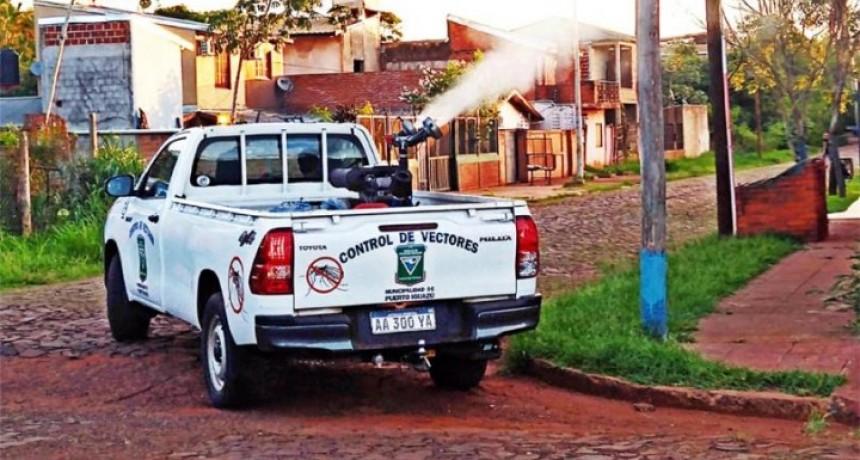 Foz de Iguazú declaró estado de epidemia por dengue y hay alerta en la frontera misionera