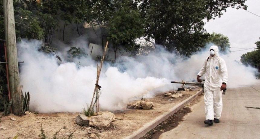 Corrientes: confirman que son 67 los casos de dengue y 23 son autóctonos