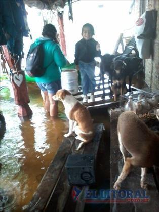 Retrocede la inundación pero preocupa el acceso al agua potable y los vectores
