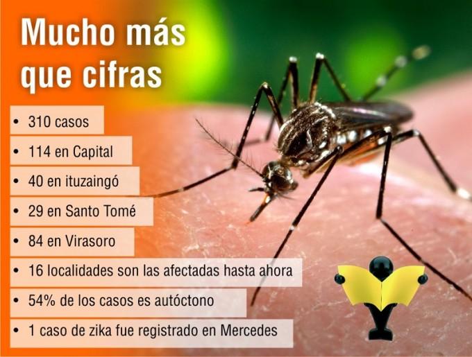 Corrientes totaliza 310 casos de dengue y el 54% es autóctono