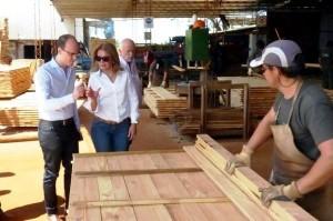 Nación compromete respaldo al desarrollo maderero correntino
