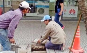 Corrientes, con los niveles de desocupación más altos del NEA