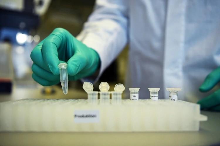 Científicos alemanes lograron aislar la principal enzima del coronavirus y crearon un compuesto para inhibirla