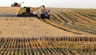 Un ministro de Scioli afirmó que se podrían bajar retenciones al trigo