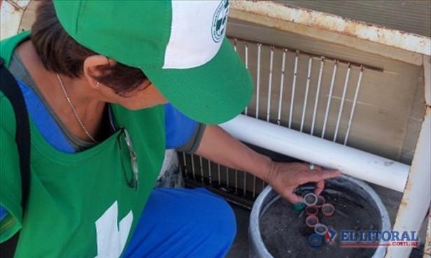 Diagnosticaron un caso de dengue y piden prevención