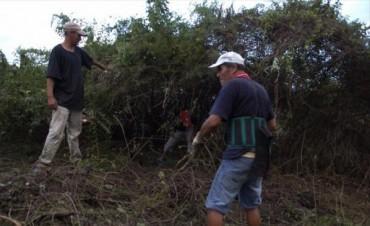 Unas 150 familias numerosas usurparon terrenos baldíos en el barrio Patono