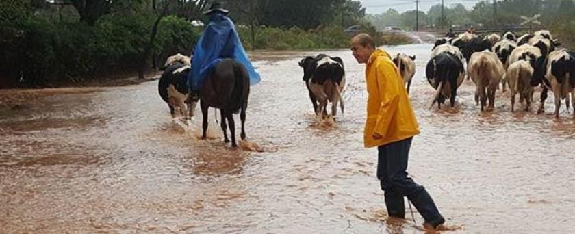 Suman más de mil personas afectadas por las inundaciones en el interior
