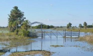 Producción: buscan mitigar pérdidas por exceso hídrico