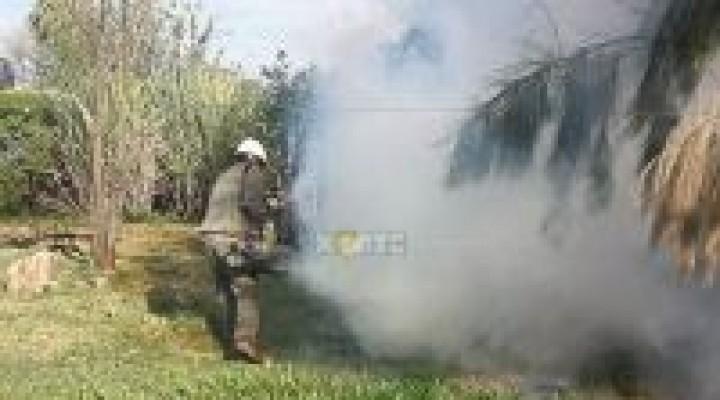 La Nación mantendrá vigente el alerta por dengue en las provincias del NEA