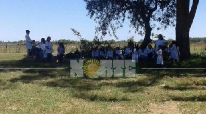 Saladas: dan clases al aire libre por problemas edilicios