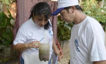 Estudio vectorial indica que hay riesgo de dengue en más del 80% de los barrios