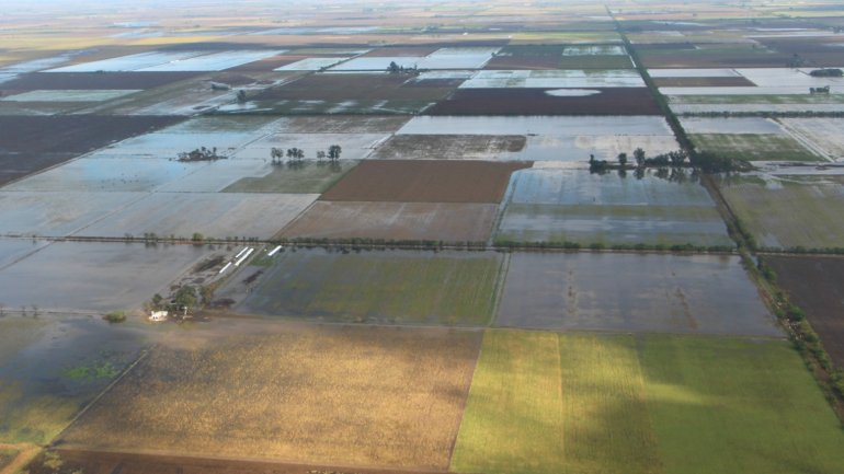 Las inundaciones provocaron la pérdida de 6 millones de toneladas de soja