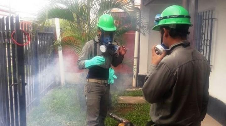 Hay alerta nacional por dengue y en Corrientes confirmarán más casos