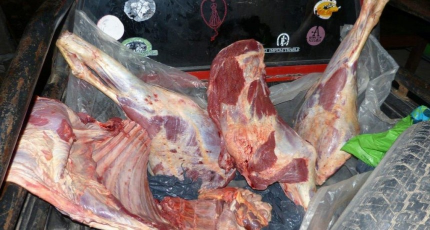 Abigeato: en allanamientos en San Carlos y San Luis incautaron 180 kilos de carne