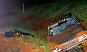 Fatalidad: mueren un hombre en el vuelco de un auto y un motociclista de 16 años
