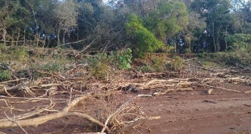Corrientes: hallan flotando el cadáver de un soldado