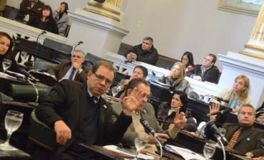 El debate en Diputados giró en torno a la falta de personal en los hospitales